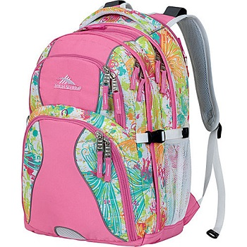 High Sierra Laptop Backpack for Women